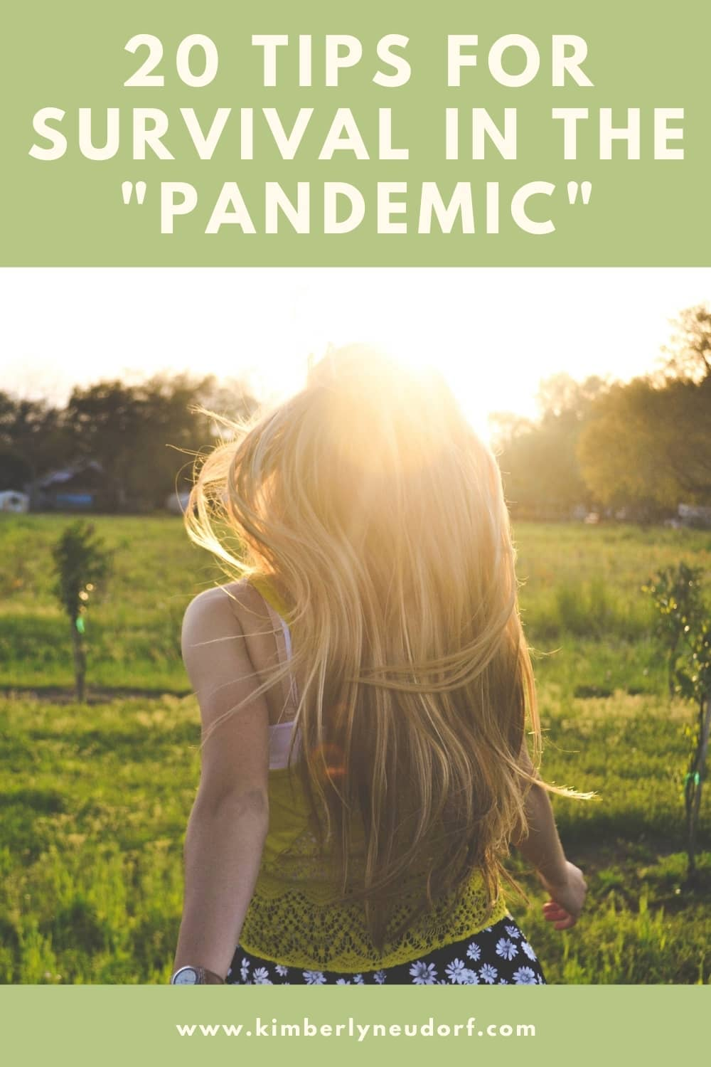 20 tips for survival in the pandemic kimberly neudorf title