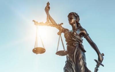 Court Updates with Rocco Galati